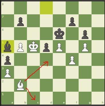 Carlsen vs Duda decisive position