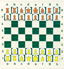 Demonstration Chess Boards For Teachers/Coaches